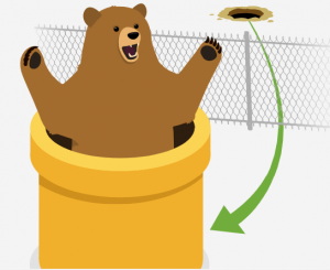 Tunnel Bear VPN